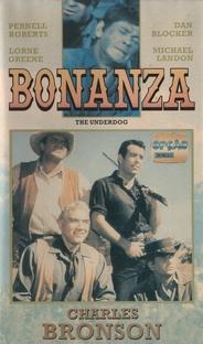 Bonanza - Poster / Capa / Cartaz - Oficial 1