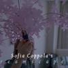 O Cinema de Sofia Coppola
