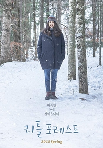 Little Forest - Poster / Capa / Cartaz - Oficial 6