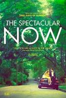 O Maravilhoso Agora (The Spectacular Now)