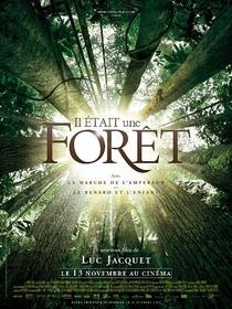 Aconteceu na Floresta - Poster / Capa / Cartaz - Oficial 1