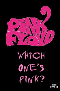 The Pink Floyd Story: Which One's Pink? - Poster / Capa / Cartaz - Oficial 2