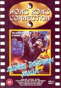 Silver Ninja - Poster / Capa / Cartaz - Oficial 1