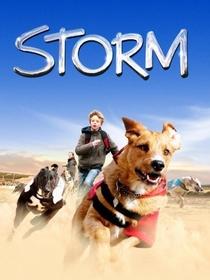 Meu Amigo Storm - Poster / Capa / Cartaz - Oficial 1
