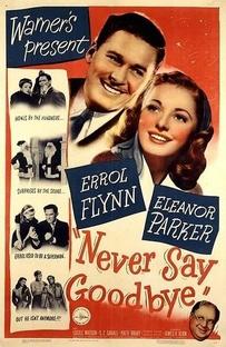 Nunca me Diga Adeus - Poster / Capa / Cartaz - Oficial 1