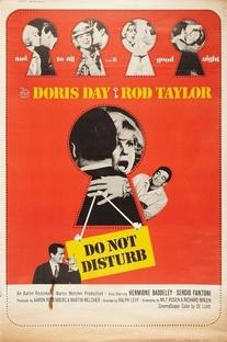 Favor Não Incomodar - Poster / Capa / Cartaz - Oficial 2