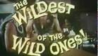 Wild Rebels (1967) trailer