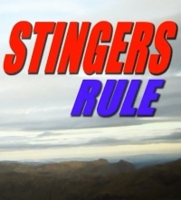 Stingers Rule! - Poster / Capa / Cartaz - Oficial 1