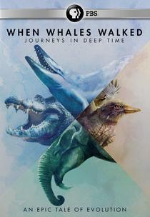 Quando Baleias Caminhavam - Poster / Capa / Cartaz - Oficial 1
