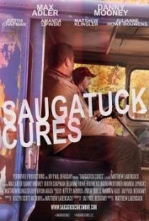 Saugatuck Cures - Poster / Capa / Cartaz - Oficial 2