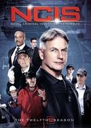 NCIS: Investigações Criminais  (12ª Temporada) (NCIS: Naval Criminal Investigative Service (Season 12))