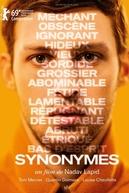Sinônimos (Synonymes)