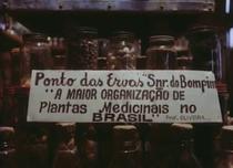 Ponto das Ervas - Poster / Capa / Cartaz - Oficial 1