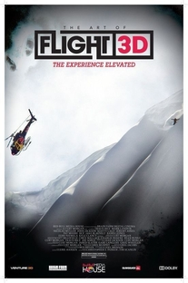 The Art of Flight - Poster / Capa / Cartaz - Oficial 2