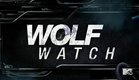 Teen Wolf - Wolf Watch 5x01 with Tyler P, Jeff D, Holland R, Dylan S. and Shelley H.