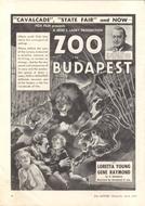 Um Romance em Budapeste (Zoo in Budapest)