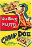 Cachorro no Acampamento (Camp Dog)