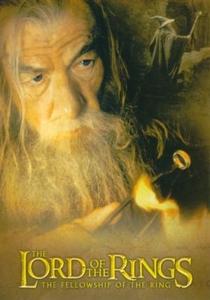 O Senhor dos Anéis: A Sociedade do Anel - Poster / Capa / Cartaz - Oficial 27