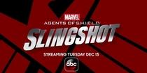 Agentes da S.H.I.E.L.D. - Ioiô (1ª Temporada) - Poster / Capa / Cartaz - Oficial 3