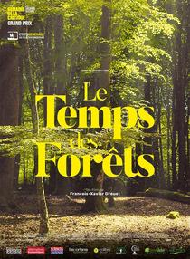 O Tempo das Florestas - Poster / Capa / Cartaz - Oficial 1