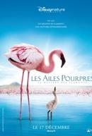 Grande Balé Vermelho: O Mistério Dos Flamingos (The Crimson Wing: Mystery of the Flamingos)