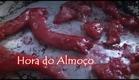 Hora do Almoço - Trailer [2014]