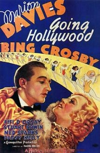 Delírios de Hollywood - Poster / Capa / Cartaz - Oficial 1