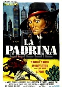 Lady Dinamite - Poster / Capa / Cartaz - Oficial 1