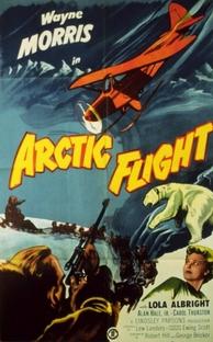 Arctic Flight - Poster / Capa / Cartaz - Oficial 1