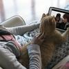 Estudo mostra que cães e gatos são a melhor companhia para maratonar séries!