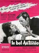 O Belo Antônio (Il Bell' Antonio)