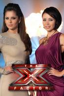 The X Factor UK (7ª Temporada)  (The X Factor UK (Season 7) )
