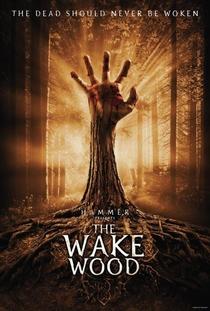 Despertar dos Mortos - Poster / Capa / Cartaz - Oficial 2