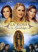 A Rosa dos Milagres (La rosa de Guadalupe)