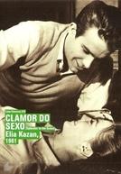 Clamor do Sexo (Splendor in the Grass)