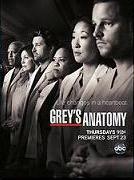 Grey's Anatomy (8ª Temporada) - Poster / Capa / Cartaz - Oficial 8