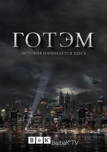 Gotham (1ª Temporada) - Poster / Capa / Cartaz - Oficial 12
