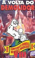 Campeonato Mundial de Artes Marciais VIII - A Volta do Demolidor  - Poster / Capa / Cartaz - Oficial 1