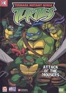 As Tartarugas Mutantes Ninja (7ª Temporada) (Teenage Mutant Ninja Turtles (Season 7))