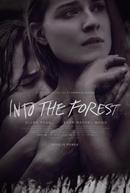 No Escuro da Floresta (Into the Forest)