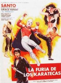 A Fúria dos Karatecas - Poster / Capa / Cartaz - Oficial 1