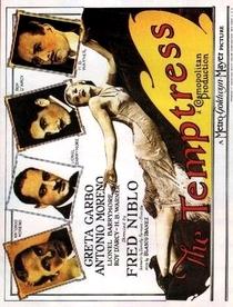 Terra de Todos - Poster / Capa / Cartaz - Oficial 3