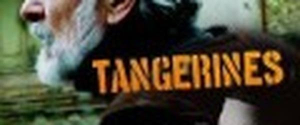 Review   Mandariinid(2013) Tangerines