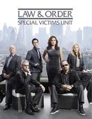 Law & Order: Special Victims Unit (14ª temporada) (Law & Order: Special Victims Unit (season 14))