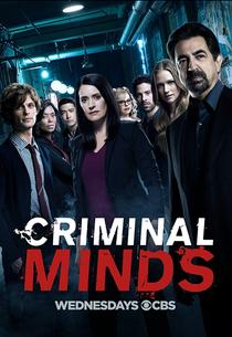 Mentes Criminosas (13ª Temporada) - Poster / Capa / Cartaz - Oficial 1