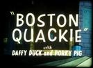 Boston Quackie (Boston Quackie)