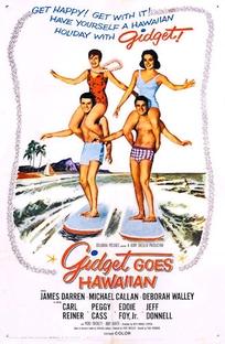 Férias no Hawai - Poster / Capa / Cartaz - Oficial 1