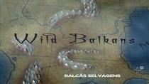 Balcãs Selvagens - Poster / Capa / Cartaz - Oficial 1