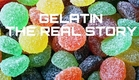 Gelatin - The Real Story