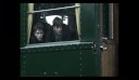 64.169 dans/in film 'Françoise Dolto,  le désir de vivre'